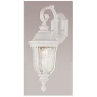 Trans Globe Lighting 4020-WH Chessie 1 Light 20 inch White Outdoor Wall Lantern