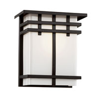 Trans Globe Iced Glass 1 Light Outdoor Wall Lantern in Black 40202-BK