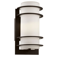 Trans Globe Cityscape 1 Light Outdoor Wall Lantern in Black 40204-BK