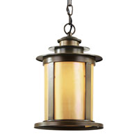 Trans Globe Rustic Lodge Outdoor 1 Light Outdoor Pendant in Antique Bronze 40213-ABZ