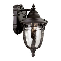 Trans Globe Braided Roman 1 Light Outdoor Wall Lantern in Rubbed Oil Bronze 40220-ROB
