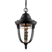 Trans Globe Braided Roman 1 Light Outdoor Pendant in Rubbed Oil Bronze 40224-ROB