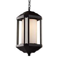 Trans Globe Downtown Trolley 1 Light Outdoor Hanging Lantern in Black 40255-BK