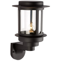 Bridgette 1 Light 13 inch Black Outdoor Wall Lantern