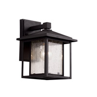 Trans Globe Patio Window 1 Light Outdoor Wall Lantern in Black 40360-BK