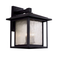 Trans Globe Patio Window 3 Light Outdoor Wall Lantern in Black 40362-BK