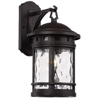 Boardwalk 1 Light 16 inch Black Outdoor Wall Lantern