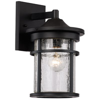 Avalon 1 Light 11 inch Black Outdoor Wall Lantern