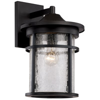 Avalon 1 Light 18 inch Black Outdoor Wall Lantern