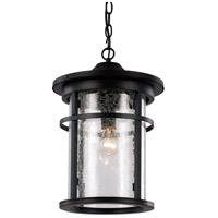Avalon 1 Light 9 inch Black Outdoor Hanging Lantern