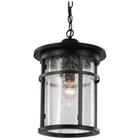 Avalon 1 Light 11 inch Black Outdoor Hanging Lantern