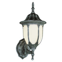 Trans Globe Avignon 1 Light Outdoor Wall Lantern in Swedish Iron 4040-SWI