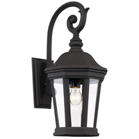 Westfield 1 Light 21 inch Black Outdoor Wall Lantern