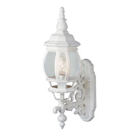 Rochelle 1 Light 21 inch White Outdoor Wall Lantern