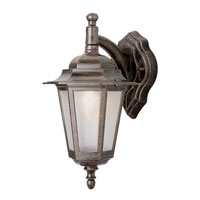 Trans Globe Lighting The Standard 1 Light Outdoor Wall Lantern in Rust 4056-RT