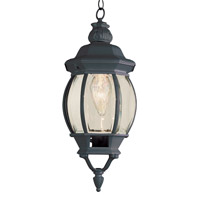 Trans Globe Rochefort 1 Light Outdoor Hanging Lantern in Black 4065-BK