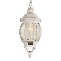 Trans Globe Rochefort 1 Light Outdoor Hanging Lantern in White 4065-WH
