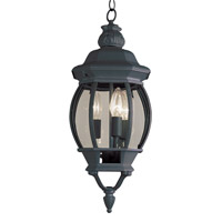 Rochefort 3 Light 8 inch Black Outdoor Hanging Lantern