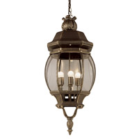 Trans Globe Rochefort 4 Light Outdoor Hanging Lantern in Black Gold 4067-BG