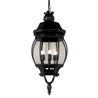 Trans Globe Rochefort 4 Light Outdoor Hanging Lantern in Black 4067-BK