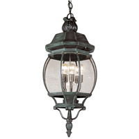 Trans Globe Rochefort 4 Light Outdoor Hanging Lantern in Verde Green 4067-VG