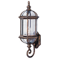 Trans Globe Lighting 4180-BG Wentworth 1 Light 22 inch Black Gold Outdoor Wall Lantern