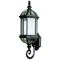 Trans Globe Botanica 1 Light Outdoor Wall Lantern in Black 4180-BK