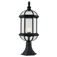 Trans Globe Botanica 1 Light Post Lantern in Black 4182-BK