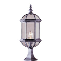 Botanica 1 Light 21 inch Swedish Iron Post Lantern