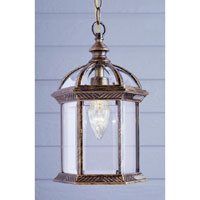 Trans Globe Lighting Classic 1 Light Outdoor Hanging Lantern in Black Gold 4183-BG
