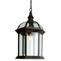 Botanica 1 Light 7 inch Black Outdoor Hanging Lantern