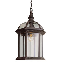 Trans Globe Lighting Classic 1 Light Outdoor Hanging Lantern in Rust 4183-RT