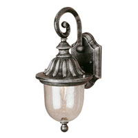 Trans Globe Chablais 1 Light Outdoor Wall Lantern in Swedish Iron 4184-SWI