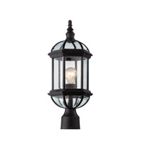 Trans Globe Botanica 1 Light Post Lantern in Rust 4186-RT