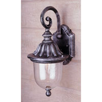 Trans Globe Chablais 1 Light Outdoor Wall Lantern in Swedish Iron 4187-SWI
