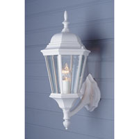Signature 1 Light 23 inch White Outdoor Wall Lantern in Clear Glass Beveled Edges