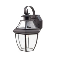 Glass House 1 Light 13 inch Weathered Bronze Outdoor Wall Lantern