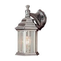 Trans Globe Lighting The Standard 1 Light Outdoor Wall Lantern in Brushed Nickel 4349-BN photo thumbnail