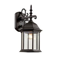 Trans Globe Alicante 1 Light Outdoor Wall Lantern in Black 4354-BK