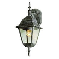 Trans Globe Arnherst 1 Light Outdoor Wall Lantern in Swedish Iron 4411-SWI