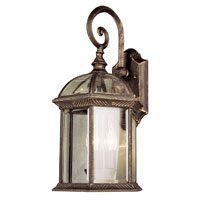 Botanica 1 Light 16 inch Black Copper Outdoor Wall Lantern