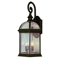 Botanica 3 Light 19 inch Rust Outdoor Wall Lantern