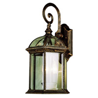 Trans Globe Botanica 4 Light Outdoor Wall Lantern in Black Copper 44182-BC