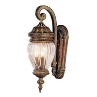 Trans Globe Lighting New American 1 Light Outdoor Wall Lantern in Antique Gold 4440-AG