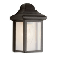 Trans Globe Lighting The Standard 1 Light Outdoor Pocket Lantern in Black 44835-BK