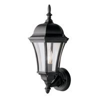 Summerville 1 Light 17 inch Black Outdoor Wall Lantern