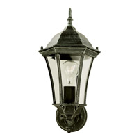 Summerville 1 Light 17 inch Verde Green Outdoor Wall Lantern