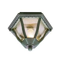 Trans Globe Lighting The Standard 1 Light Outdoor Flush Mount in Verde Green 4558-VG