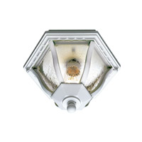 Trans Globe Worland 1 Light Flush Mount in White 4558-WH