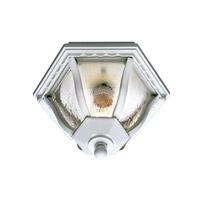 Trans Globe Lighting 4558-WH Worland 1 Light 10 inch White Flush Mount Ceiling Light